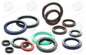 OIL SEAL - OTHERS